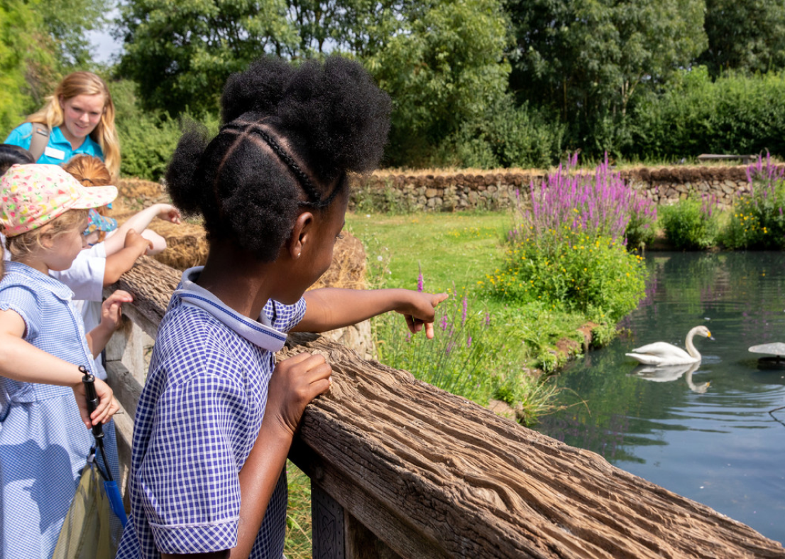 Children watching and pointing at ducks in a pond.